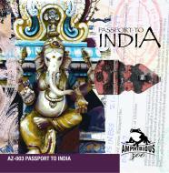 Delhi Techno cover