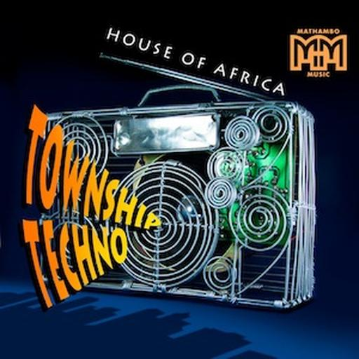 Domestic House - Alt Mix cover